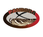 Pandora X Logo - Entry #11
