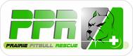 Prairie Pitbull Rescue - We Need a New Logo - Entry #108
