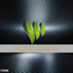 Wealth Preservation,llc Logo - Entry #200