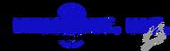 Blusonic Inc Logo - Entry #101