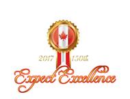 Anniversary Logo - Entry #13