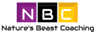 NBC  Logo - Entry #145