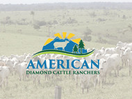 American Diamond Cattle Ranchers Logo - Entry #80