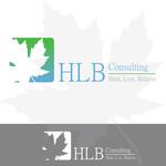 hlb consulting Logo - Entry #20