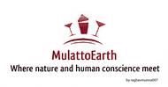 MulattoEarth Logo - Entry #50