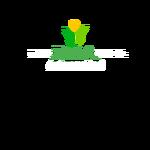 Ray Capital Advisors Logo - Entry #434