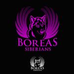 Siberian Husky Logo - Entry #16