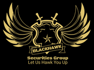 Blackhawk Securities Group Logo - Entry #113