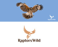 Raptors Wild Logo - Entry #276