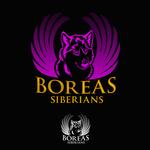 Siberian Husky Logo - Entry #22