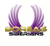 Siberian Husky Logo - Entry #48