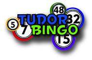 Tudor Bingo Logo - Entry #42