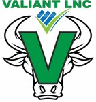 Valiant Inc. Logo - Entry #337
