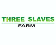 Farm Logo - Entry #25