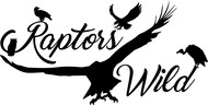Raptors Wild Logo - Entry #399