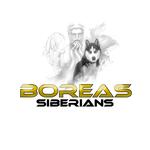 Siberian Husky Logo - Entry #76