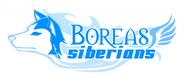 Siberian Husky Logo - Entry #34