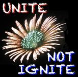 Unite not Ignite Logo - Entry #272