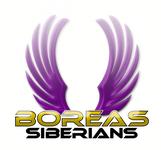 Siberian Husky Logo - Entry #46