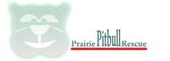 Prairie Pitbull Rescue - We Need a New Logo - Entry #41