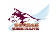 Siberian Husky Logo - Entry #167