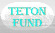 Teton Fund Acquisitions Inc Logo - Entry #89