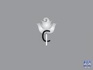 CareInsight Logo - Entry #88