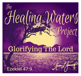 The Healing Waters Project Logo - Entry #42
