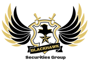 Blackhawk Securities Group Logo - Entry #101