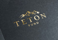 Teton Fund Acquisitions Inc Logo - Entry #27