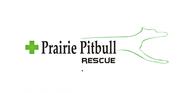 Prairie Pitbull Rescue - We Need a New Logo - Entry #114
