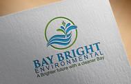 Bay Bright Environmental Logo - Entry #80