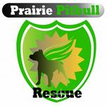Prairie Pitbull Rescue - We Need a New Logo - Entry #135