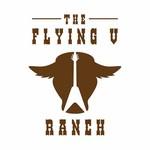The Flying V Ranch Logo - Entry #21