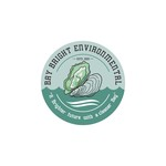 Bay Bright Environmental Logo - Entry #112