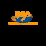 Ray Capital Advisors Logo - Entry #432