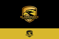 Blackhawk Securities Group Logo - Entry #19
