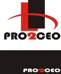 PRO2CEO Personal/Professional Development Company  Logo - Entry #45