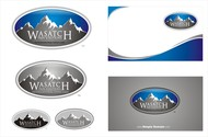 WASATCH PAIN SOLUTIONS Logo - Entry #212