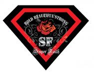 Superman Like Shield Logo - Entry #67