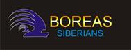 Siberian Husky Logo - Entry #102