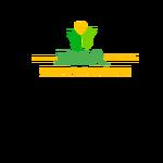 Ray Capital Advisors Logo - Entry #435