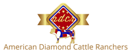American Diamond Cattle Ranchers Logo - Entry #63