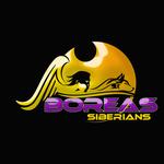 Siberian Husky Logo - Entry #180