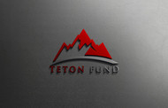 Teton Fund Acquisitions Inc Logo - Entry #2