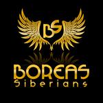 Siberian Husky Logo - Entry #105