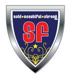 Superman Like Shield Logo - Entry #21