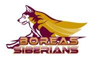 Siberian Husky Logo - Entry #164