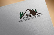 Peak Vantage Wealth Logo - Entry #13