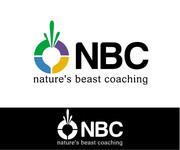 NBC  Logo - Entry #152